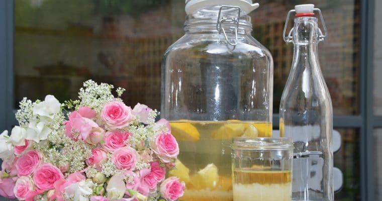 Water kefir seeds and fruit kefir recipe