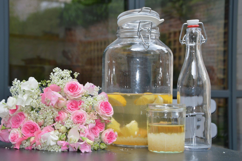Les grains de kefir d'eau et la recette du kefir de fruit